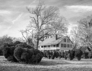 Wheeler House photographed by Marjorie Kaufman